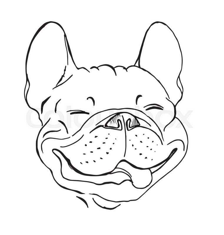 761x800 French Bulldog, Portrait, Happy Dog Face, Sketch, Black And White