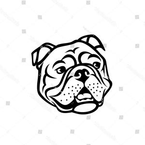 300x300 Stock Illustration English Bulldog Face French Bulldog Face Heart