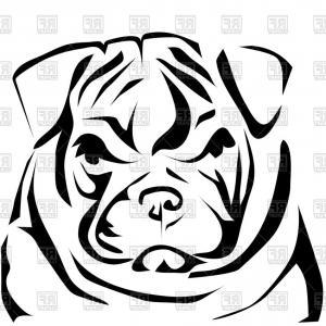 Bulldog Head Vector At Getdrawings Com Free For Personal Use