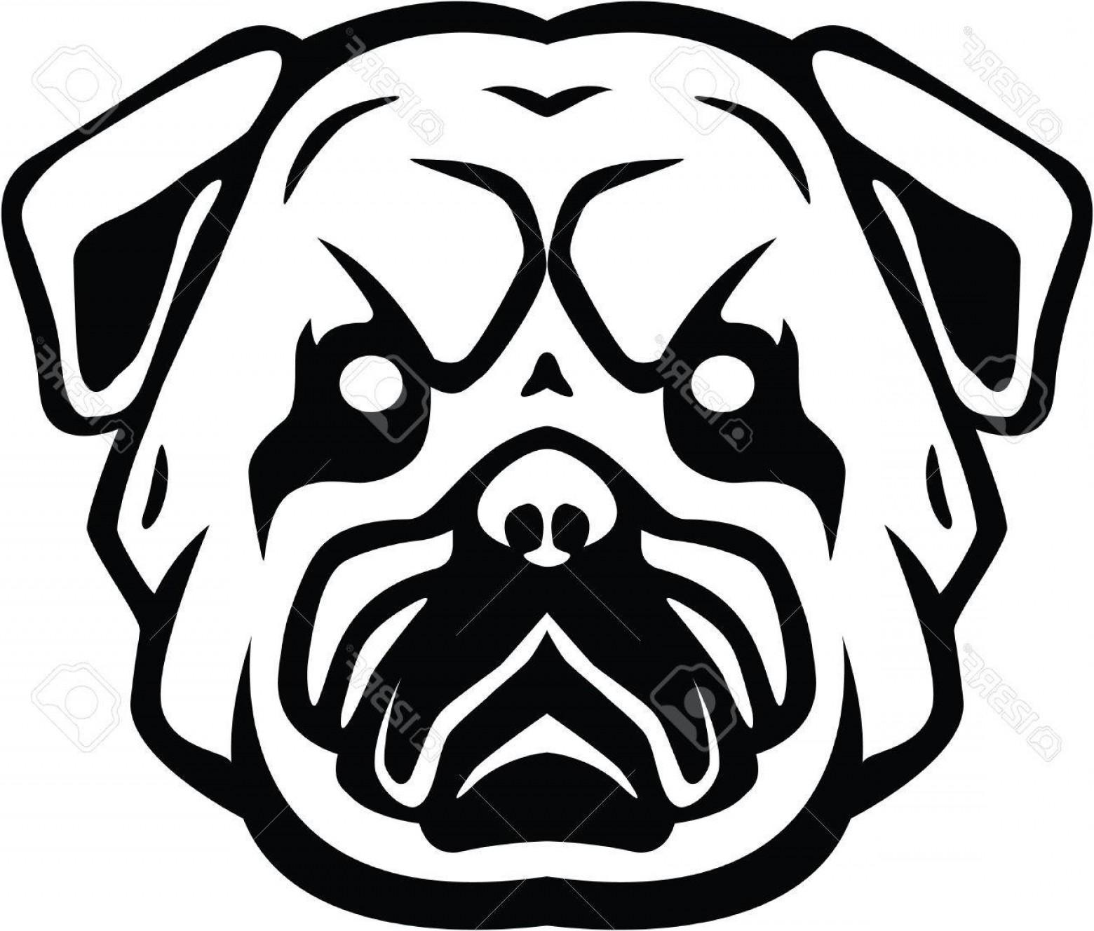 1560x1328 Photostock Vector Bulldog Head Symbol Illustration Arenawp