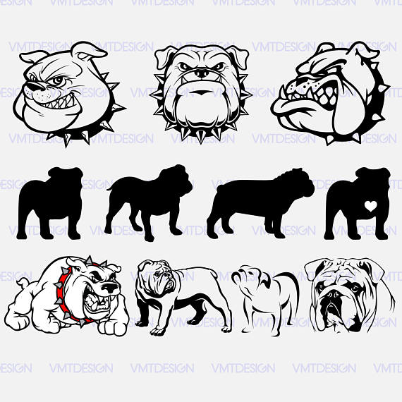 570x570 Bulldog Clipart Svg Cute Borders, Vectors, Animated, Black And