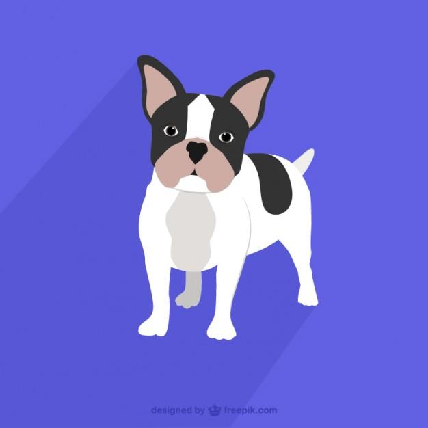 626x626 Drawn Bulldog Free Vector