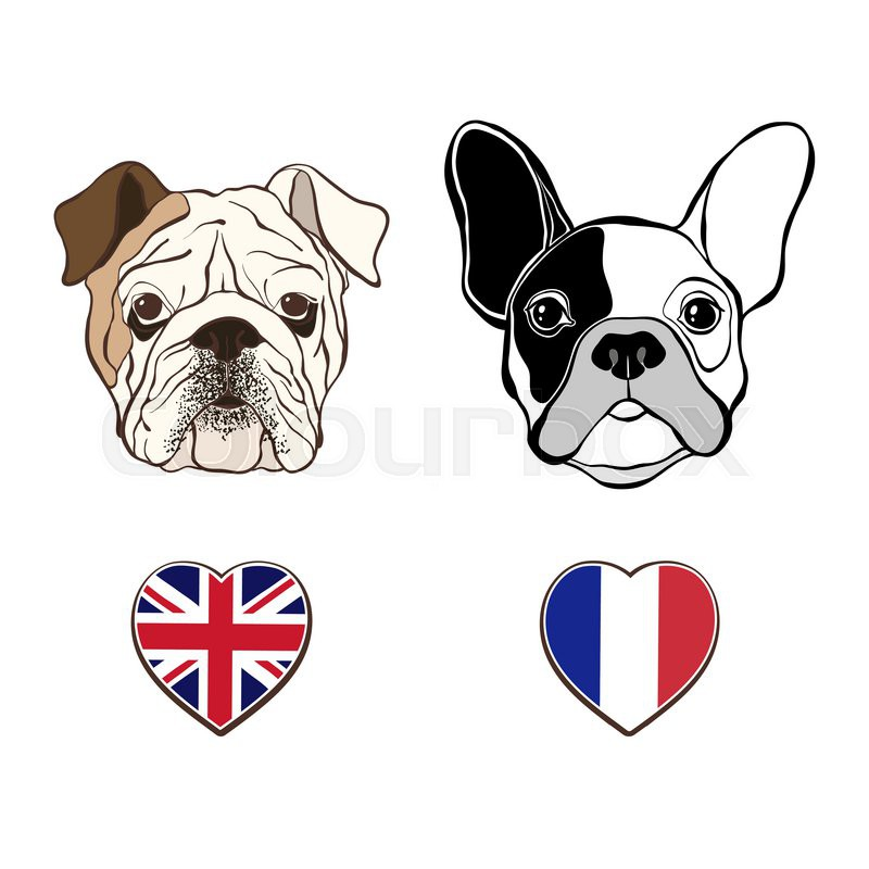 800x800 English Bulldog Face And French Bulldog Face With Heart Flags Hand