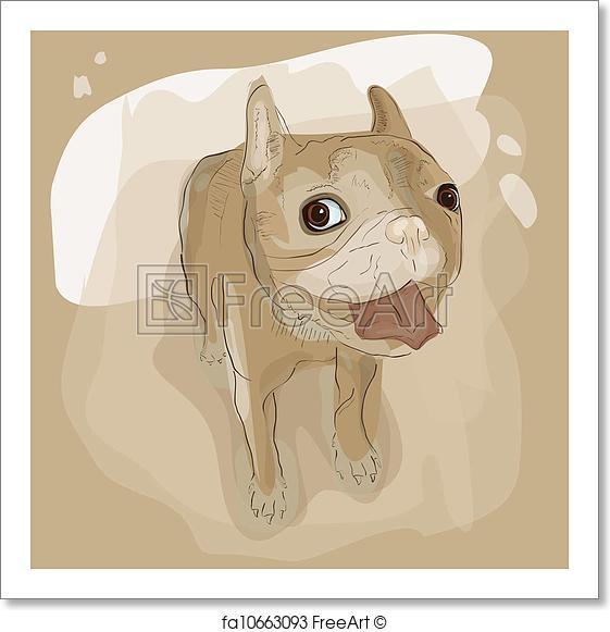 561x581 Free Art Print Of French Bulldog. Vector Illustration Of French