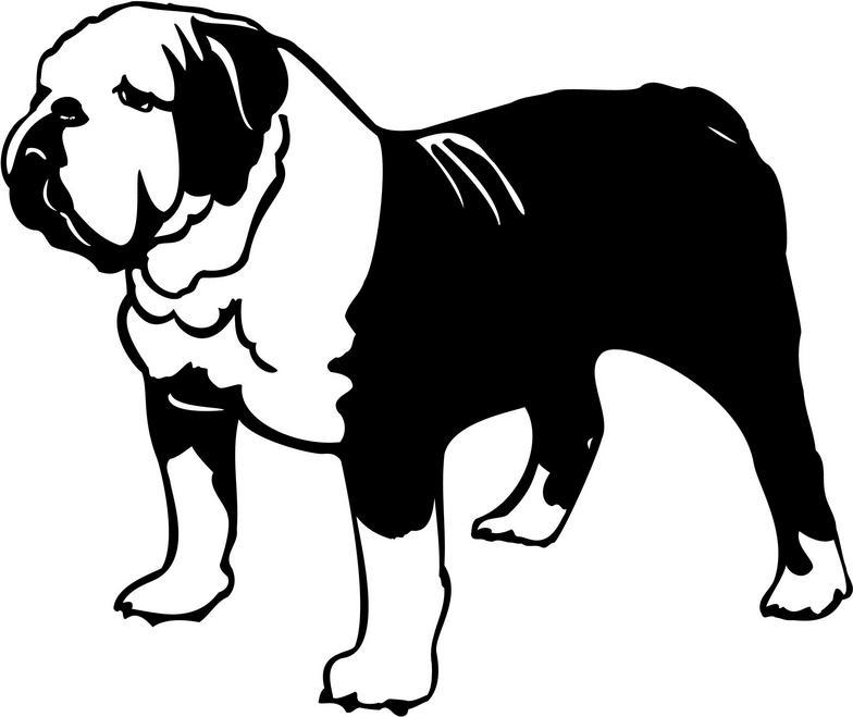 784x659 Bulldog Vector Art Free Download Clip Art