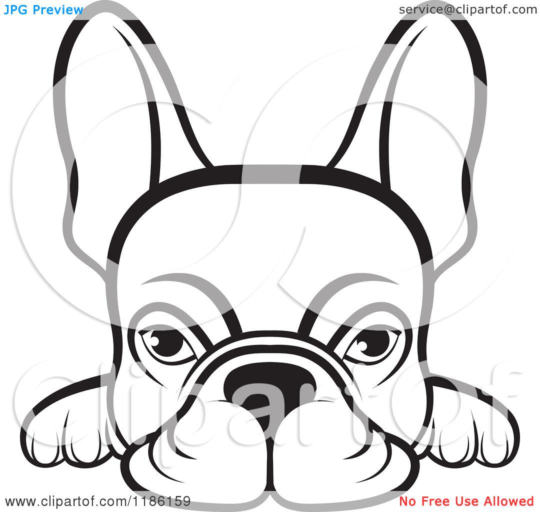 Black French Bulldog Clipart