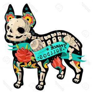 300x300 Bulldog Head Angry Bulldog Vector Orangiausa