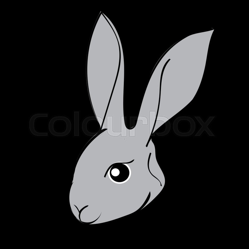 800x800 Grey Easter Rabbit Black Background Animal. Vector Illustrator