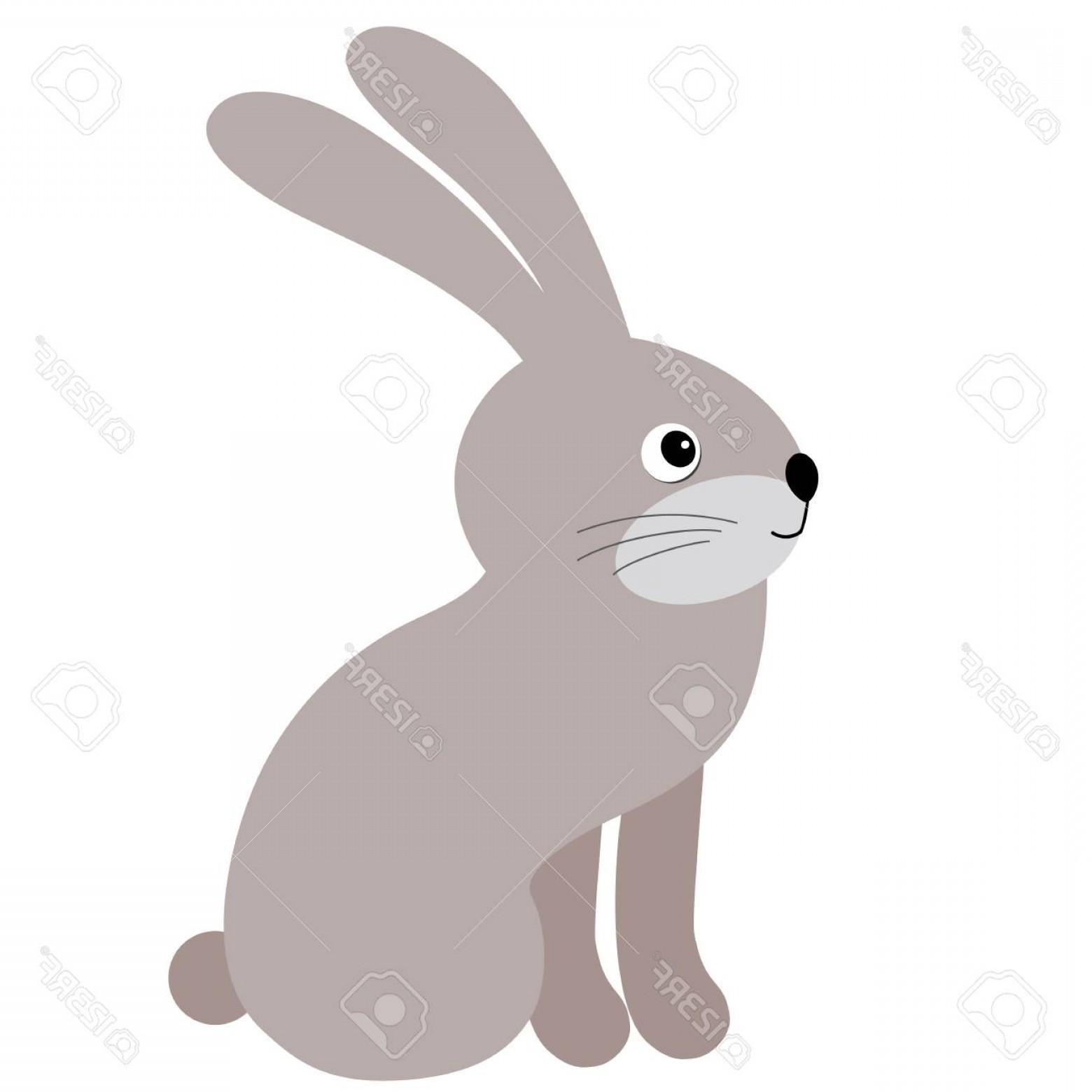 1560x1560 Photostock Vector Vector Cute Cartoon Rabbit Vector Hare Bunny