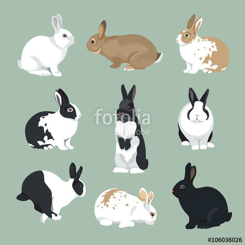 500x500 Easter Bunny Vector Illustration Rabbits Set In Retro Color Style