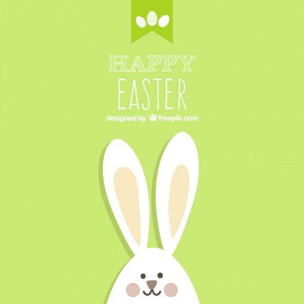 626x626 Free Rabbit Vector Art 123freevectors