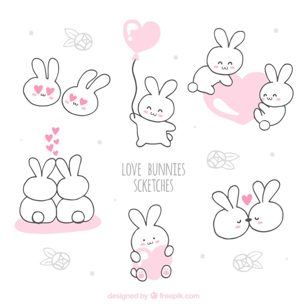 626x626 Bunny Vectors, Photos And Psd Files Free Download