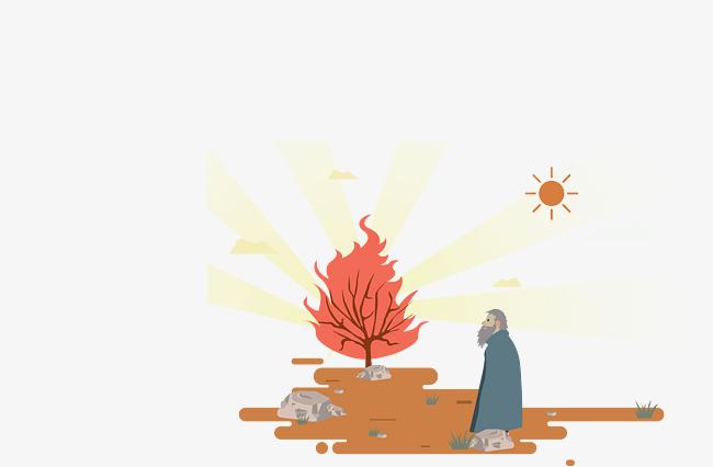 650x426 The Man Saw The Small Tree Burning, Man Vector, Tree Vector, Man