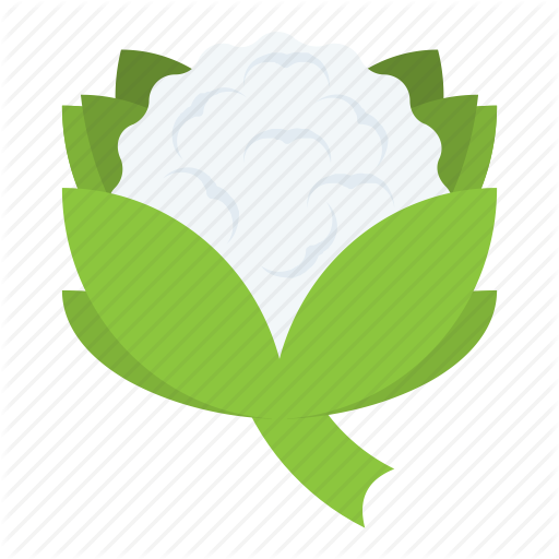 512x512 Cabbage Vector Flat ~ Frames ~ Illustrations ~ Hd Images ~ Photo
