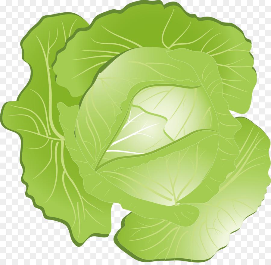 900x880 Red Cabbage Kohlrabi Clip Art