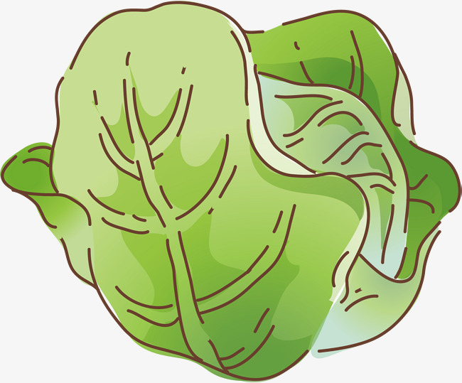 650x539 Cabbage Png Vector Element, Cabbage Vector, Vegetables, Cartoon