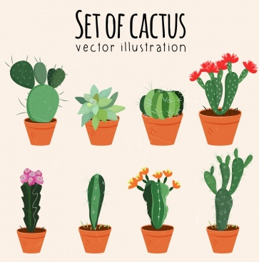 363x368 Cactus Free Vector Download (119 Free Vector) For Commercial Use