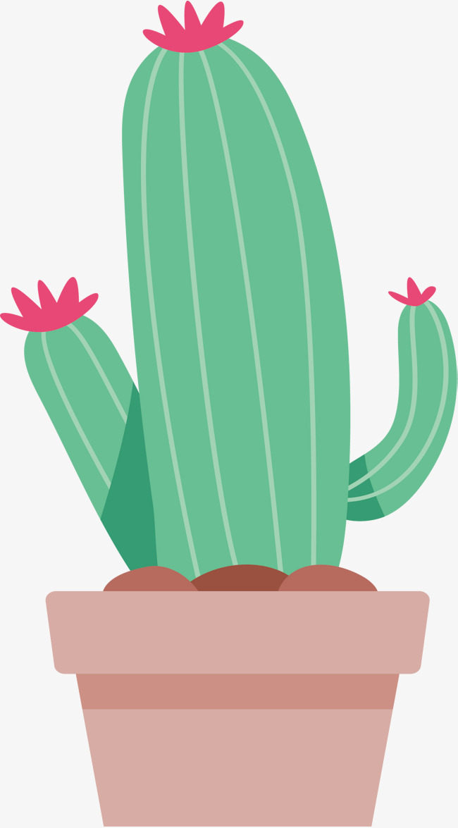 650x1175 Lovely Striped Cactus, Cactus Vector, Vector Png, Cactus Png And