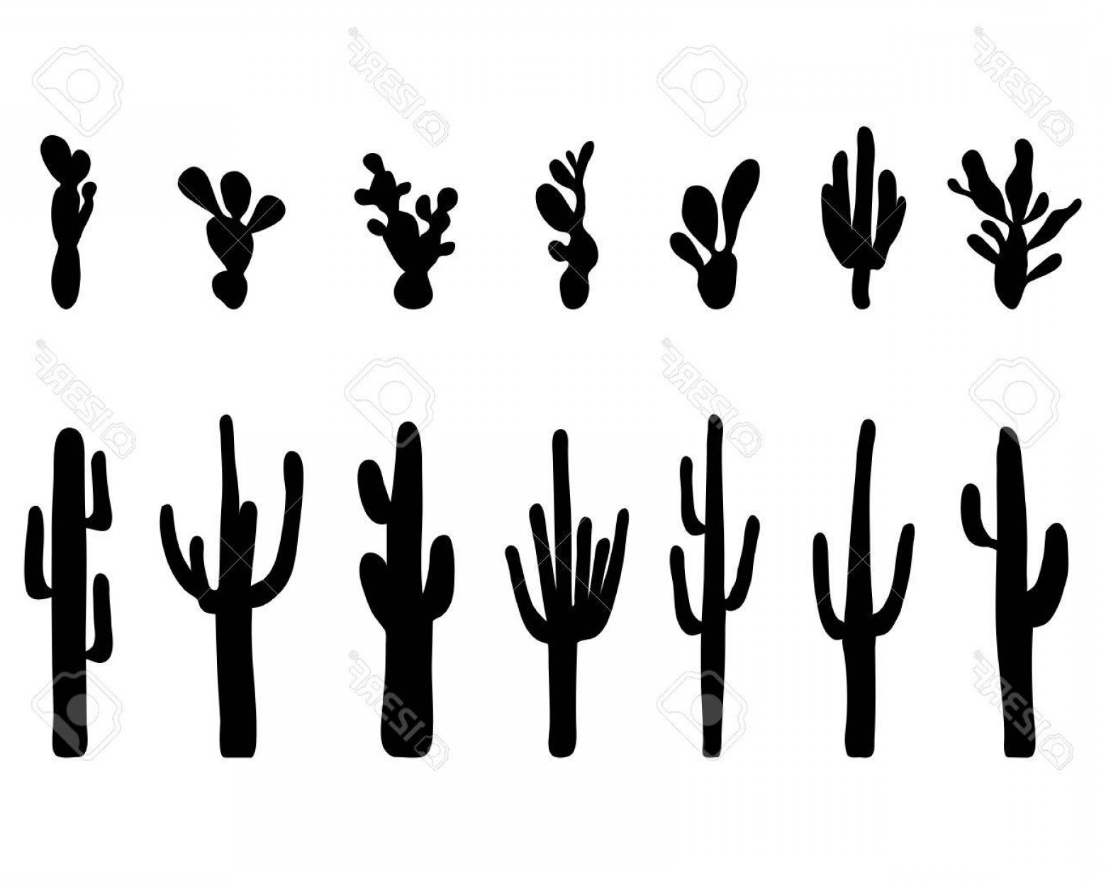 1560x1248 Photostock Vector Black Silhouettes Of Different Cactus Vector