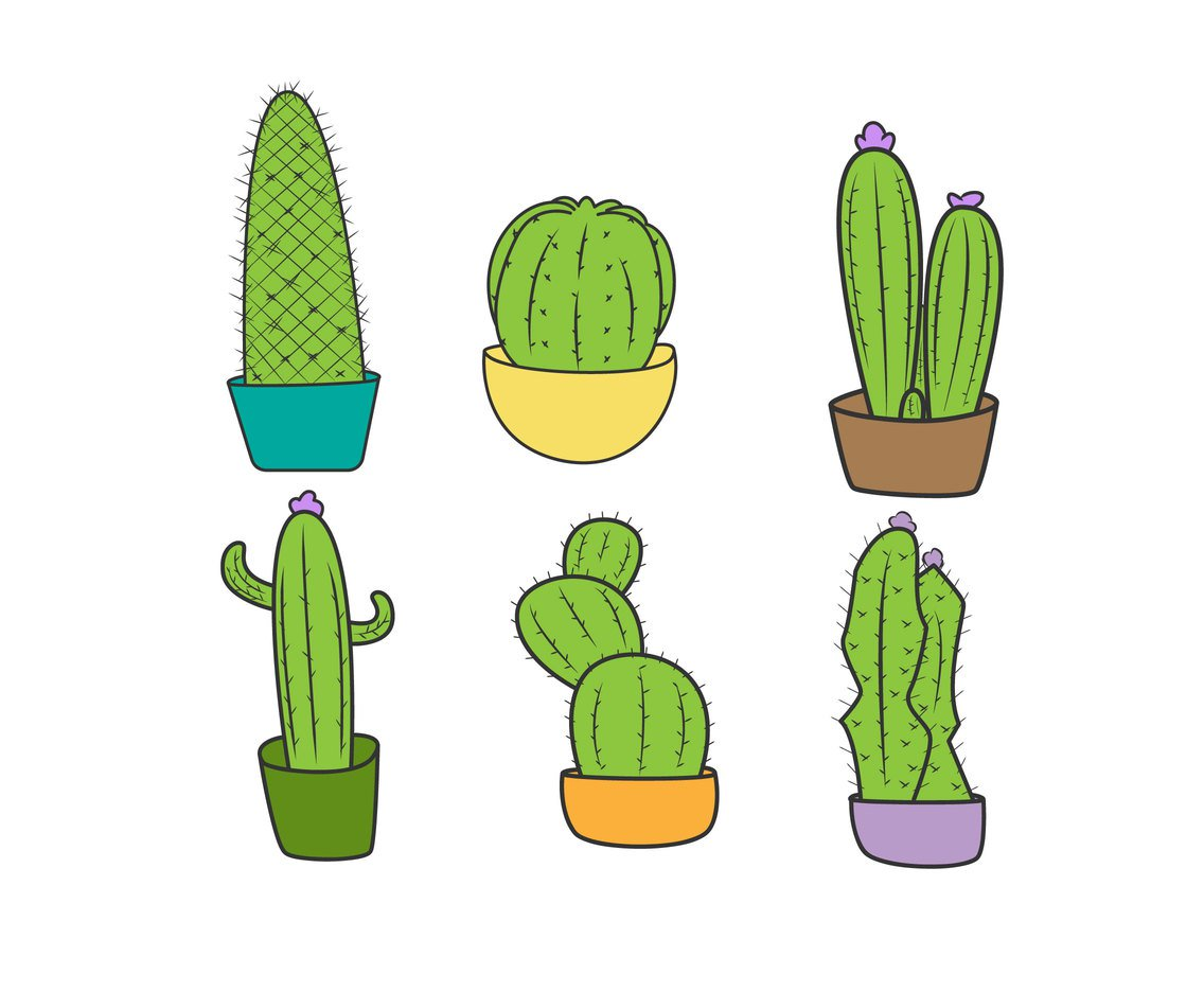 1136x936 Cactus Plants Vector Vector Art Amp Graphics
