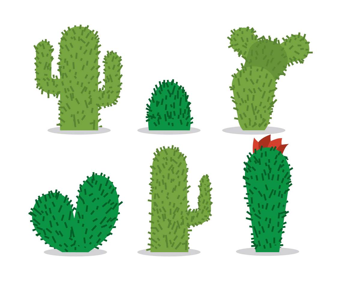 1136x936 Cactus Vector Vector Art Amp Graphics