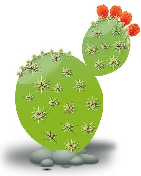 480x599 Cactus Clip Art Free Vector 4vector