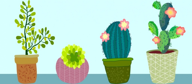 800x349 Cactus Free Vector Download (119 Free Vector) For Commercial Use