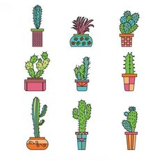 236x236 180 Best Cacti Drawing Ideas Images In 2018