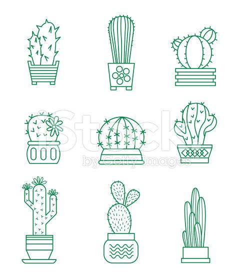 478x556 Set Of Vector Cactus Icons On White Background Cactos