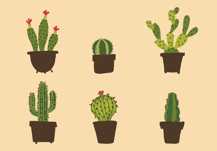 700x490 Vector Cactus Illustration Set