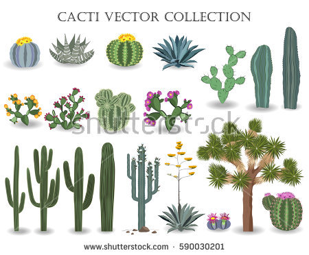 450x372 Collection Of Free Clipart Saguaro Cactus High Quality, Free