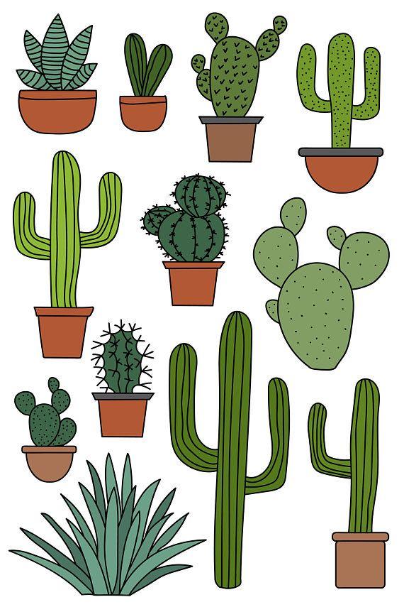 570x855 Cactus Clipart Set, Hand Drawn Clip Art Illustrations Of Desert