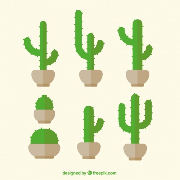 626x626 Green Cactus In Flat Design Vector Free Download