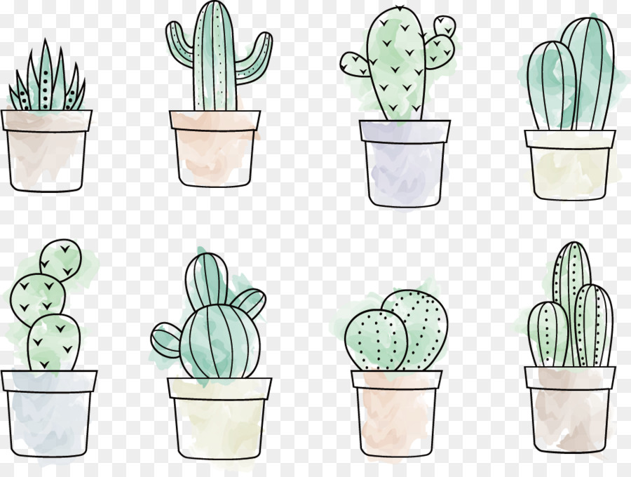 900x680 Cactaceae Drawing Painting