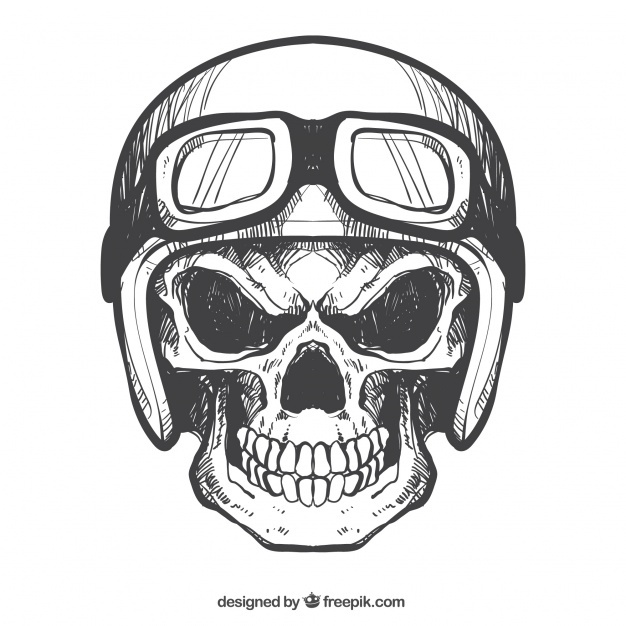 626x626 Calavera Vectors, Photos And Psd Files Free Download