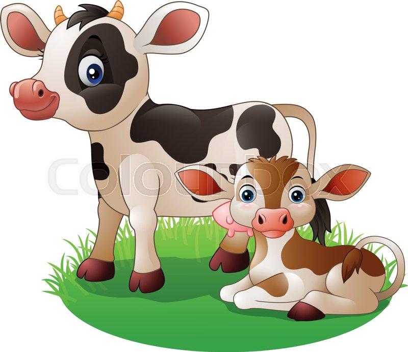 800x691 Illustration Of Cartoon Cow With Newborn Calf Stock Vector