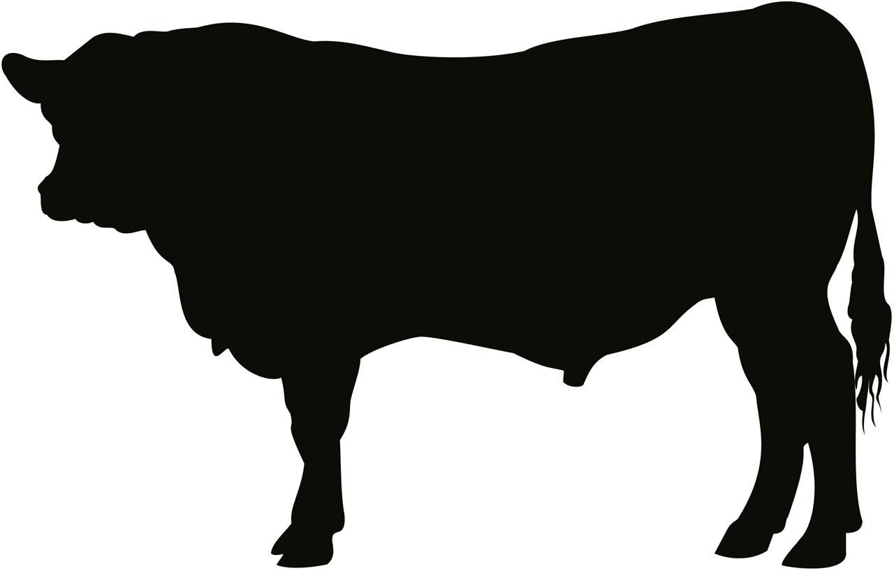 1280x818 Black Angus Calf Vector Clipart
