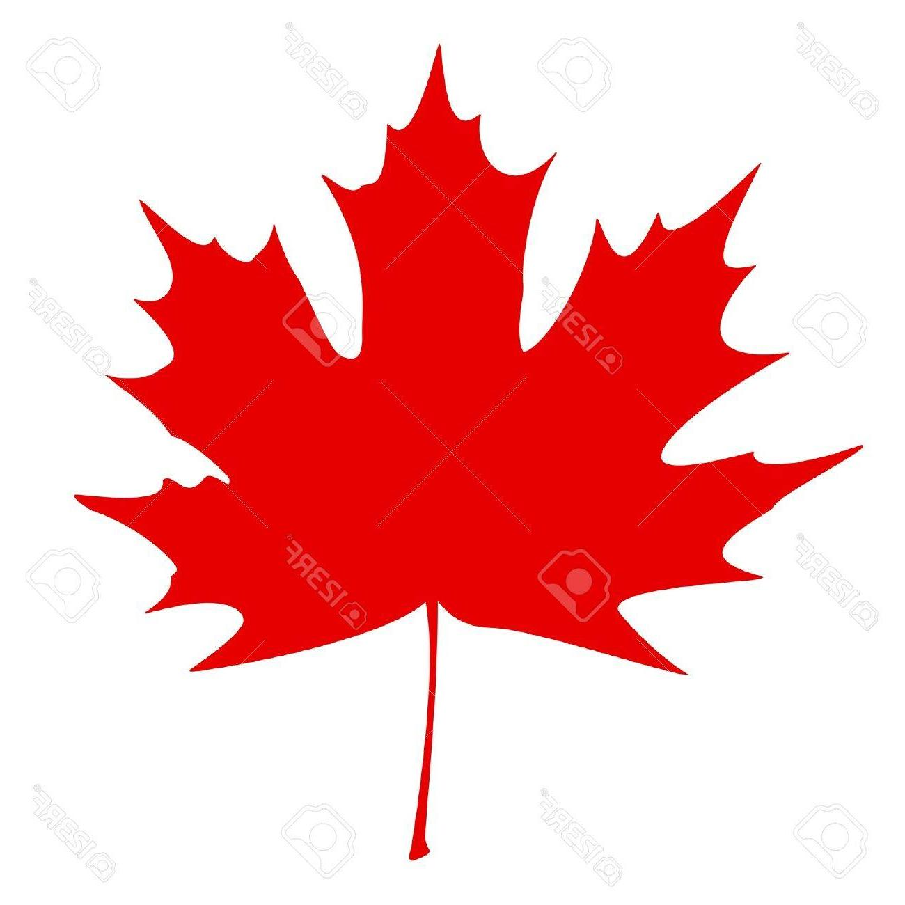 1300x1300 Best Hd Stylized Canadian Flag Vector Illustration Cdr