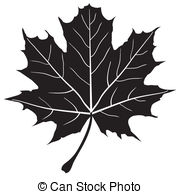 180x194 Drawn Maple Leaf Vector