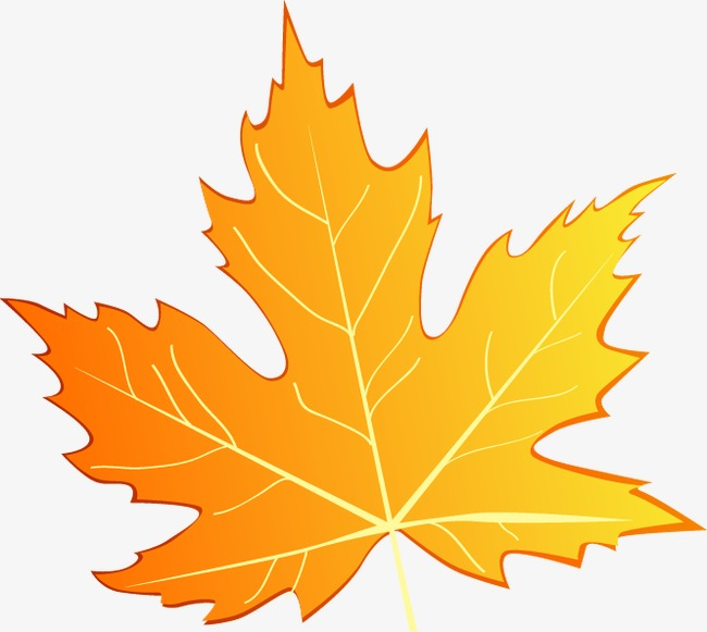 650x581 Hand Painted Maple Leaf Pattern, Leaf Vector, Pattern Vector, Hand
