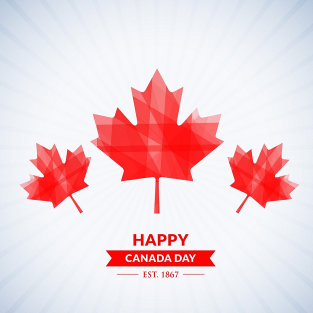 626x626 Canada Leaf Vectors, Photos And Psd Files Free Download