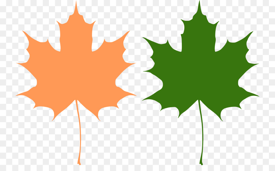 900x560 Canada Reviving Canadian Democracy Maple Leaf