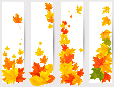 469x359 Maple Leaf Free Vector Download (4,138 Free Vector) For Commercial