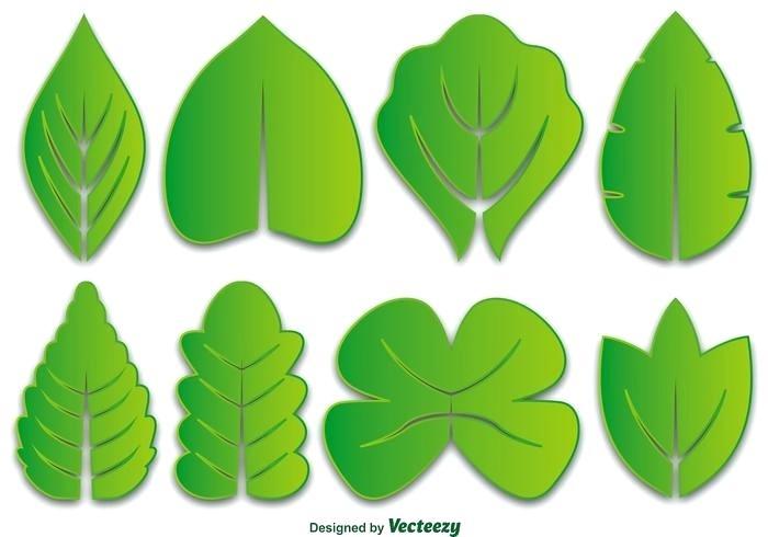 700x490 Stunning Leaf Vector Marvellous