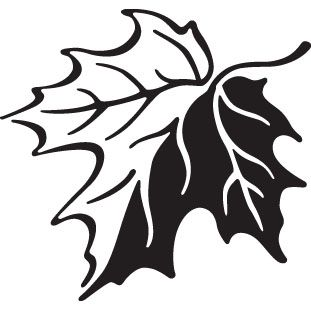 311x311 Canadian Maple Leaf Stock Vector Art Logo Black And White Icon