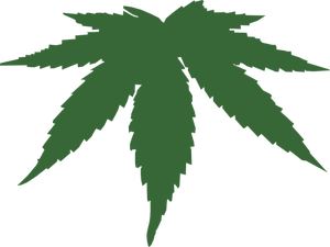 Cannabis Plant Vector