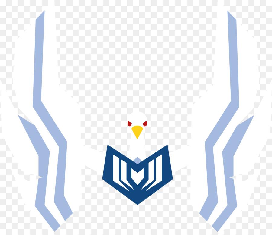 900x780 Cygnus Hyoga Pegasus Seiya Massachusetts General Hospital Logo