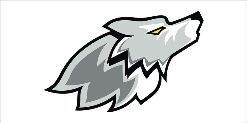 800x400 Classy Wolf Cartoon Vector Design