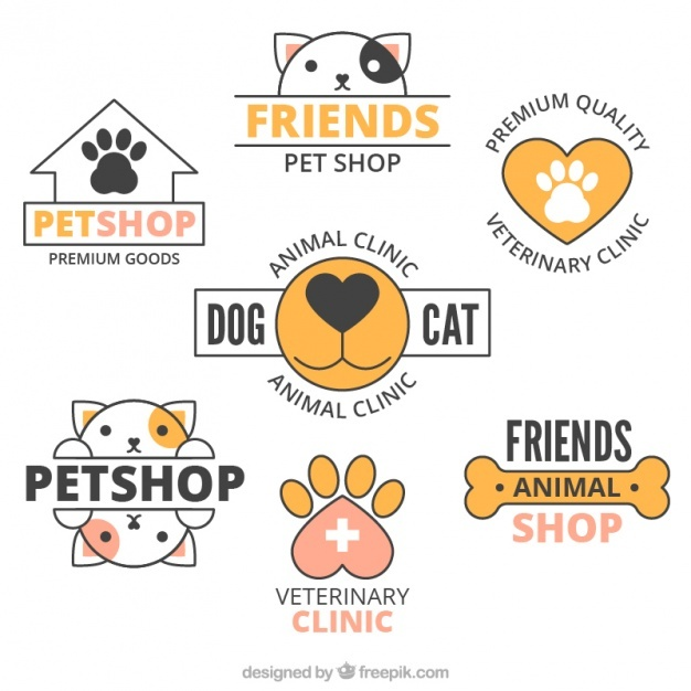 626x626 Cats And Dogs Vectors, Photos And Psd Files Free Download