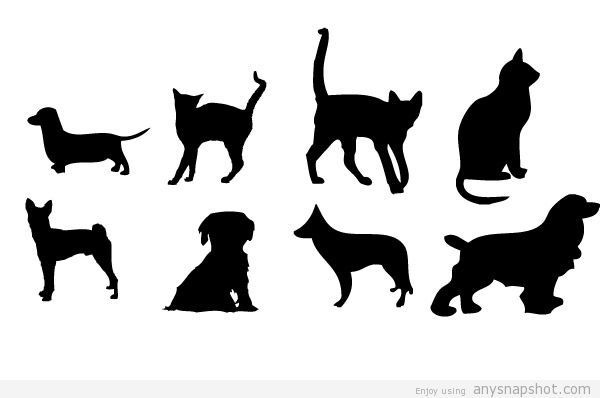 600x398 House Animals Vector Graphics Cats And Dogs